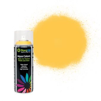 FloraLife® Aqua Colors Melon Spray Paint 400ml