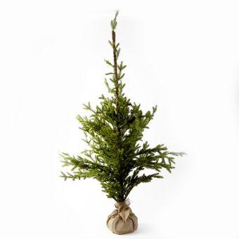 Alpine Tree - 130cm