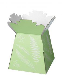 Ferns Porto Vases (Pack of 25)