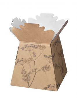 Cow Parsley Porto Vases (Pack of 25)