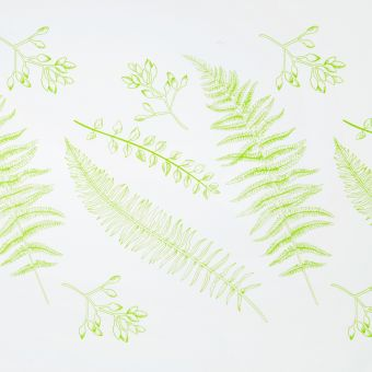 Ferns Frosted Film Roll