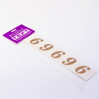 Vinyl Numbers - 6/9 - Gold - 3cm (Pack of 20)