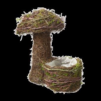 Wetlands Mushroom with Lined Pot