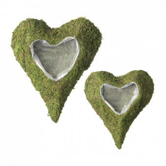 Wetlands Lined Heart