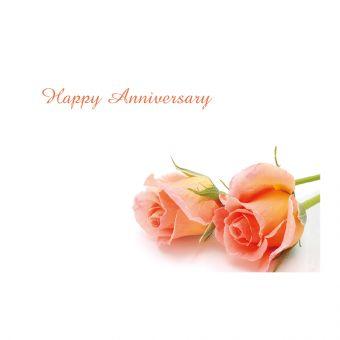Happy Anniversary Peach Roses