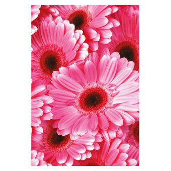Pink Gerberas - Folded