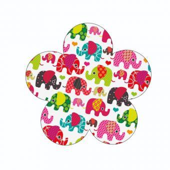 Elephants on a White Background