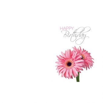 Happy Birthday, Two Pink Gerbera