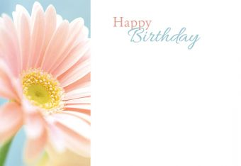 Happy Birthday - Soft Pink Gerbera Classic Worded Card