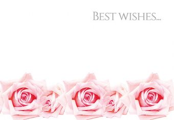 Best Wishes - Pink Roses Classic Worded Card
