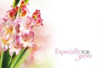 Especially for You - Gladioli Classic Worded Card