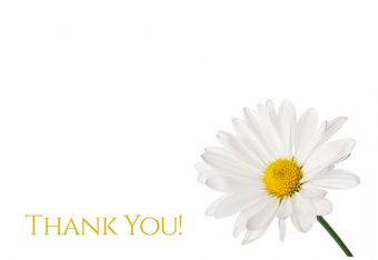 Thank You - Daisy Classic Worded Card