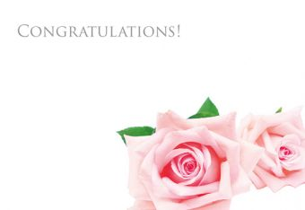Congratulations - Pink Roses Classic Worded Card