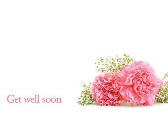 Get Well Soon - Pink Carnations & Gypsophila Classic Worded Card