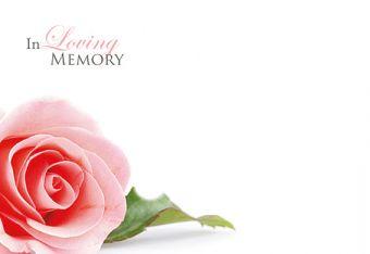 In Loving Memory - Pink Rose Remembrance Card