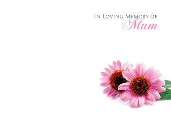 In Loving Memory of a Mum - Pink Daisies Remembrance Card