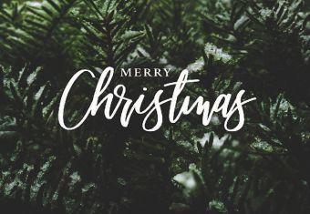 Merry Christmas - Fir Folded Worded Card