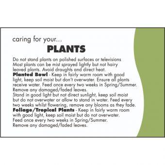 Care Card: Plants