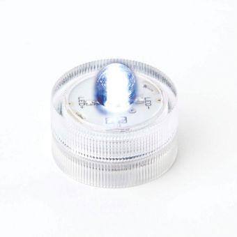 Aqua LED Light