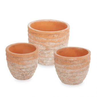 Bahia Pot