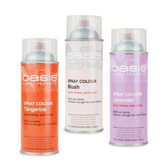 OASIS® Spray Colour Paints