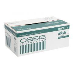 OASIS® Ideal Floral Foam Maxlife Brick