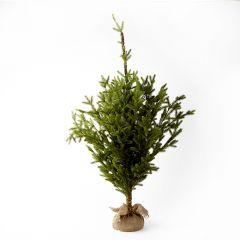 Alpine Tree - 100cm