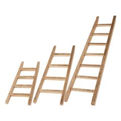 Nordic Ladder