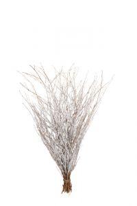 Winter Branches Flocked - White - 85cm