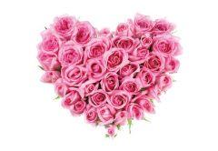 Pink Rose Heart Folded Plain Card