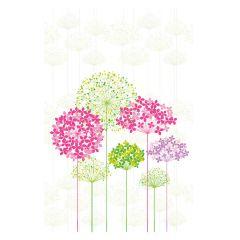 Multi-Coloured Hydrangeas - Large