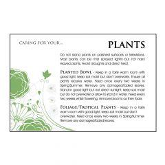 Designer Care Card - Plant