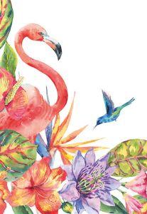 Flamingo Floral Folded Plain Card