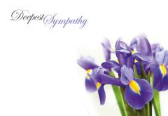 With Deepest Sympathy - Iris Remembrance Card