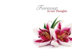 Forever in our Thoughts - Lillies Remembrance Card