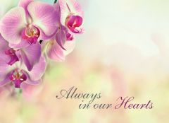 Always in our Hearts - Pink Orchid Large Remembrance Card