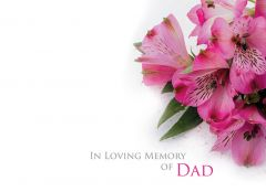 In Loving Memory of a Dad - Pink Alstroemeria Large Remembrance Card