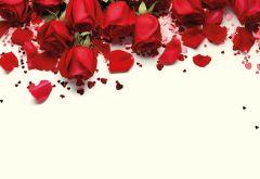 Be My Valentine, Roses & Petals Classic Plain Card