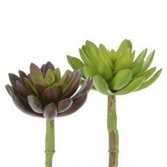 Artificial Lotus Succulent