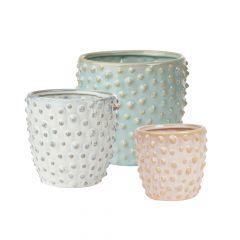 Madelyn Ceramic Pot